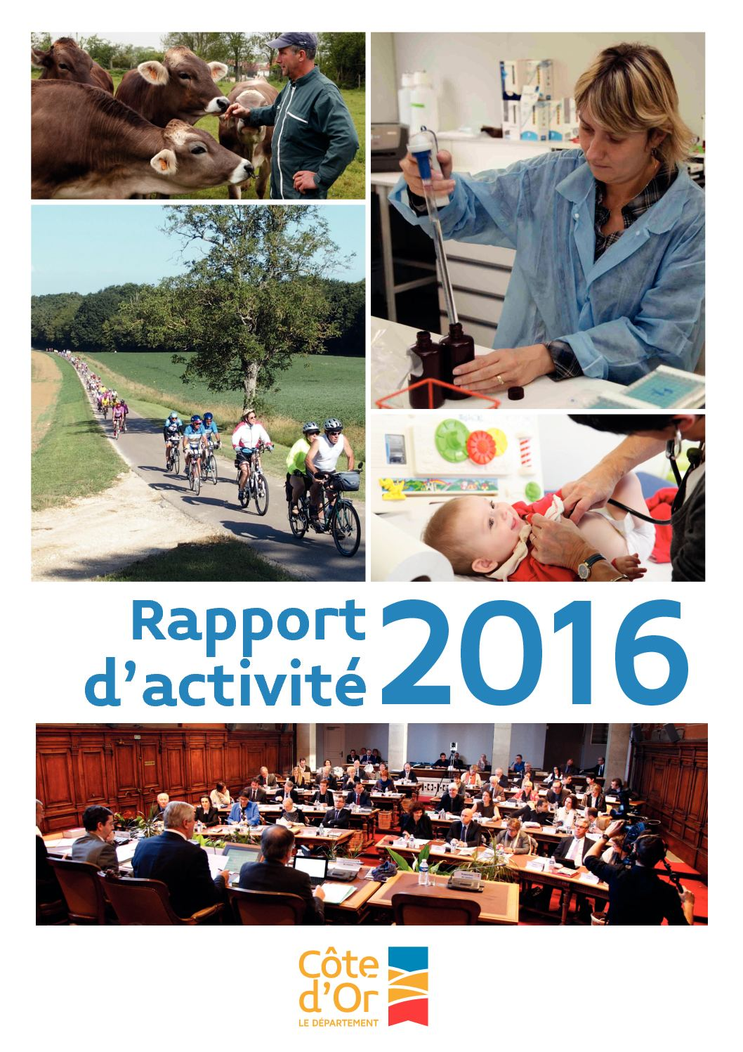 9ab15867b15 Calaméo - Rapport D activité 2016 Des Services Départementaux