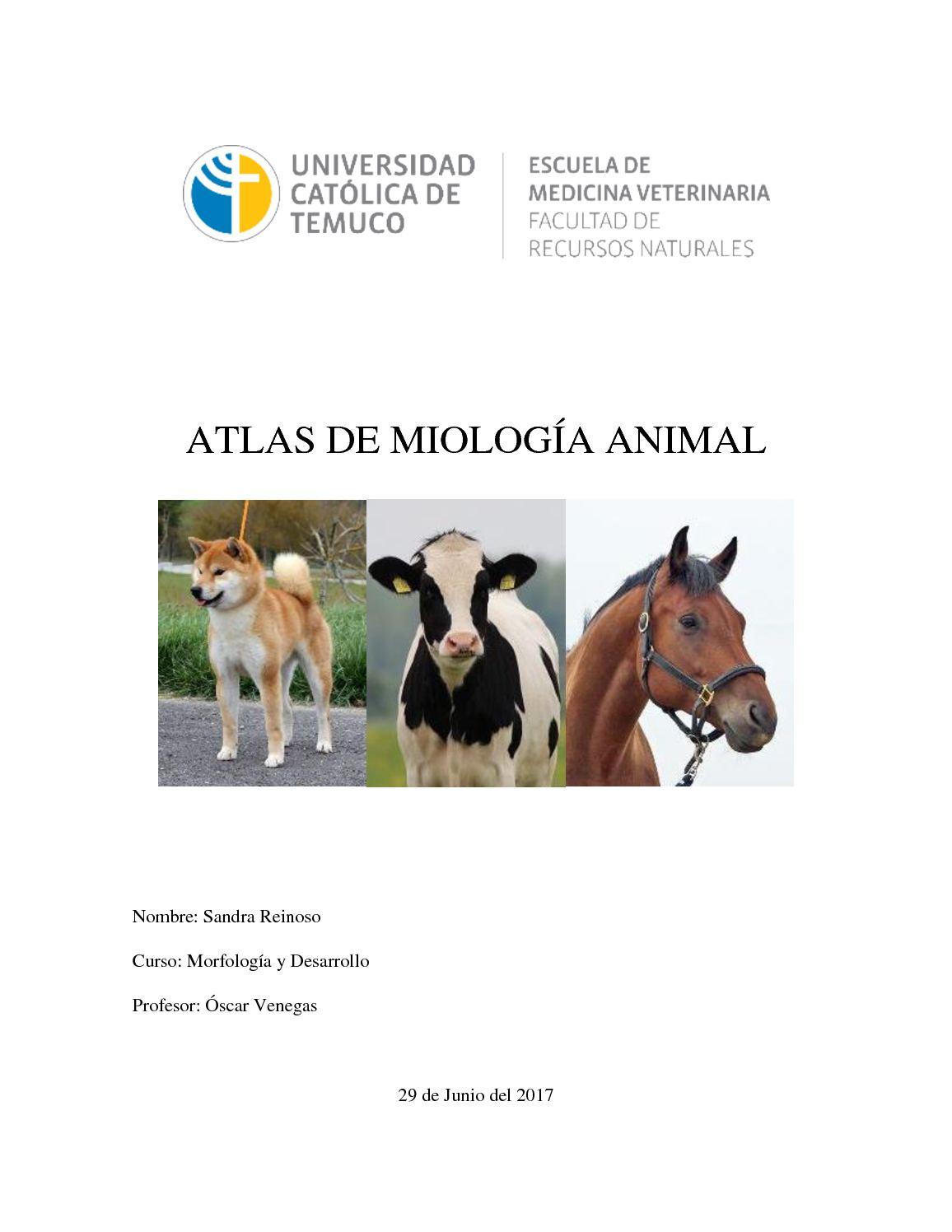 Atlas De Miología Animal