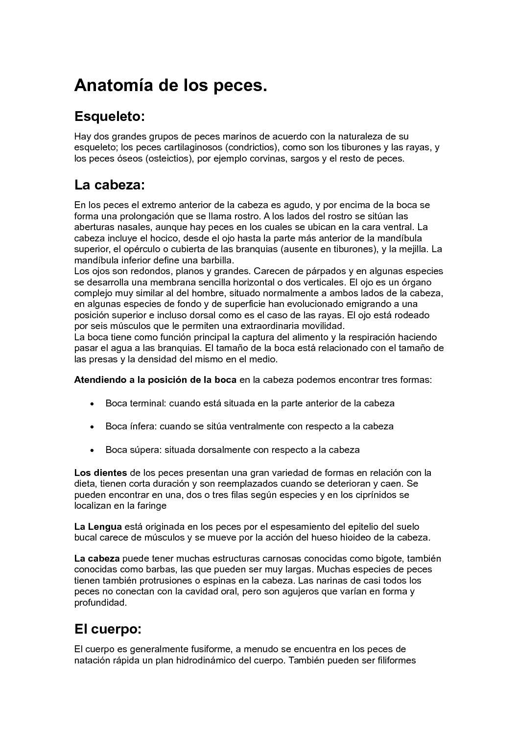 Calaméo - Anatomía De Los Peces