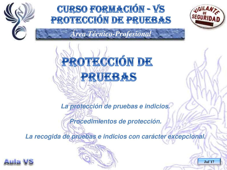 Tp11 05 Proteccion De Pruebas