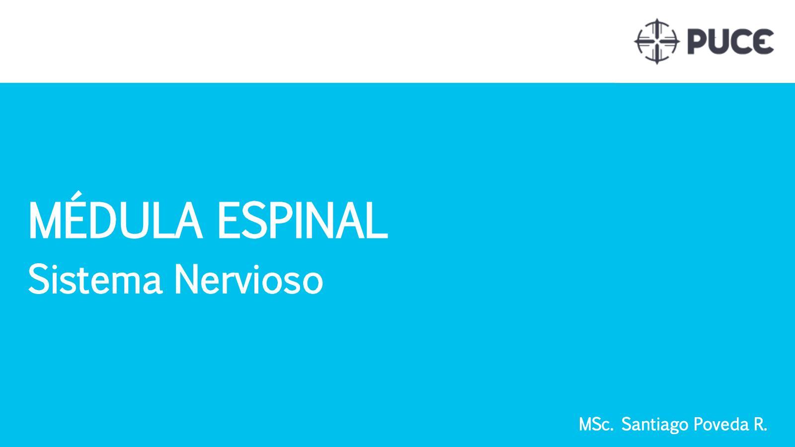 Calaméo - 5 Médula Espinal