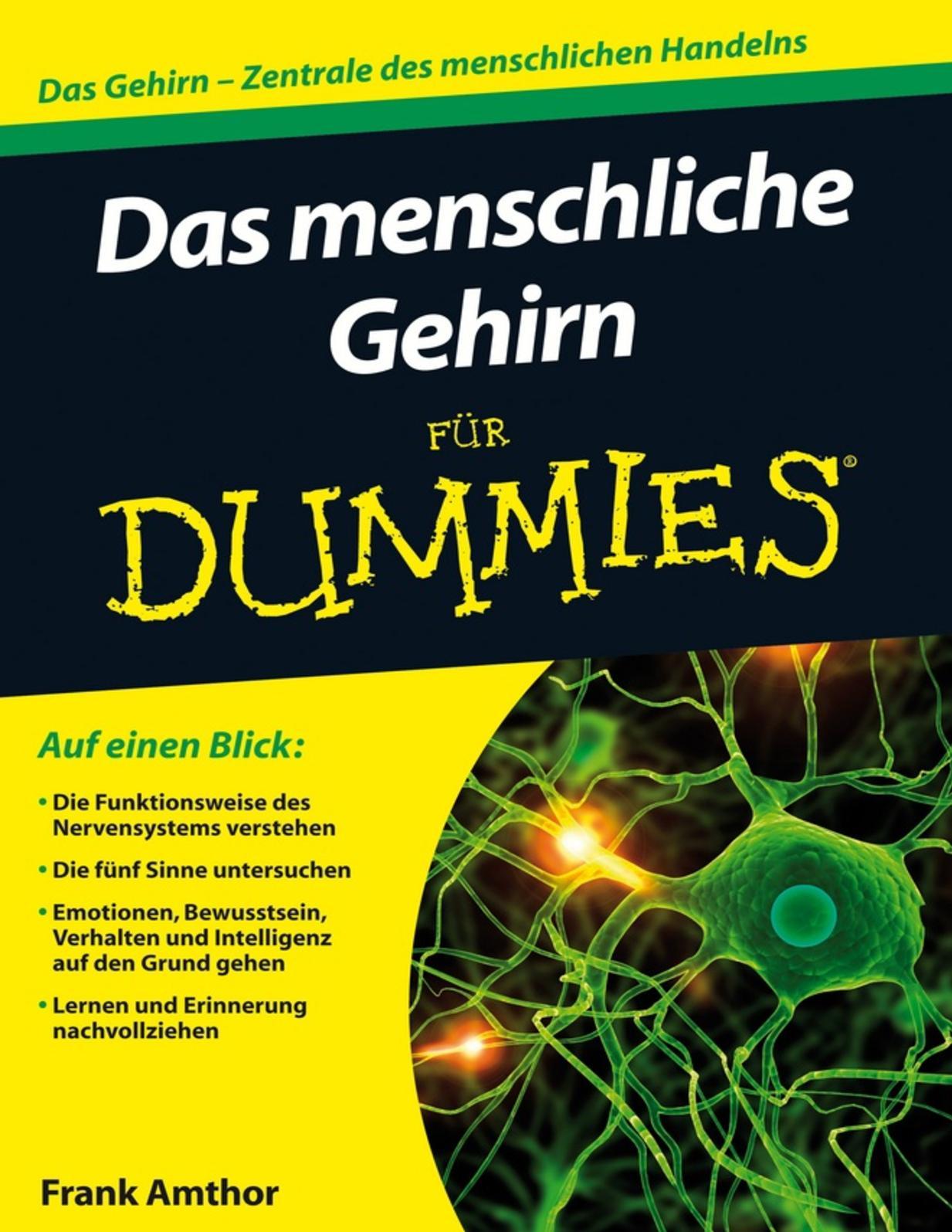 Calaméo - Das Menschliche Gehirn Für Dummies