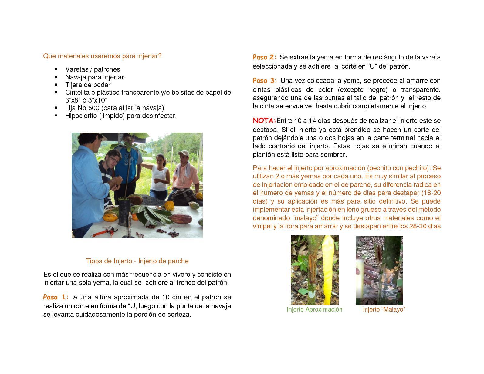 Guia De Cacao Extensionismo Rural - CALAMEO Downloader