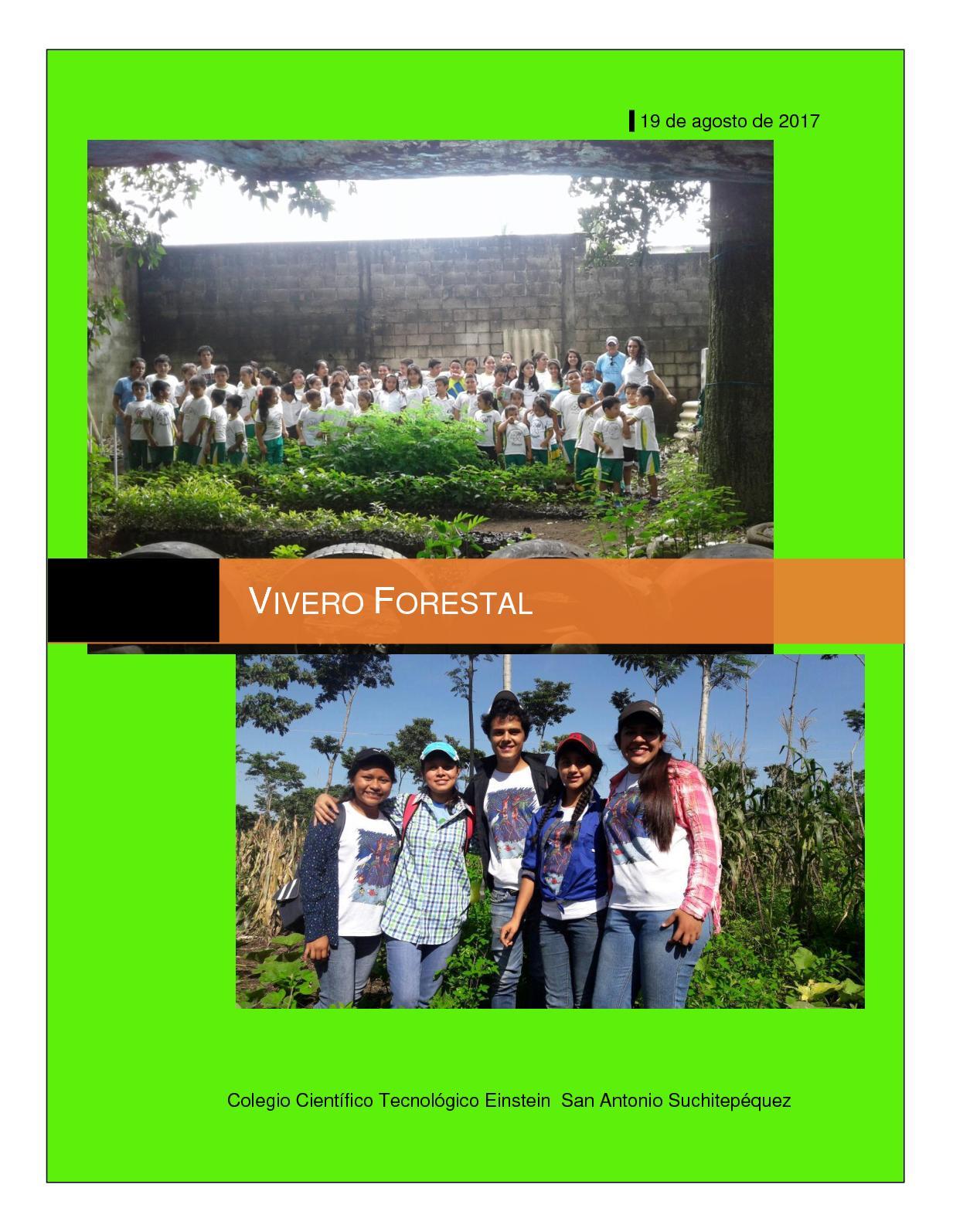 Calam o proyecto vivero escolar for Proyecto vivero ornamental