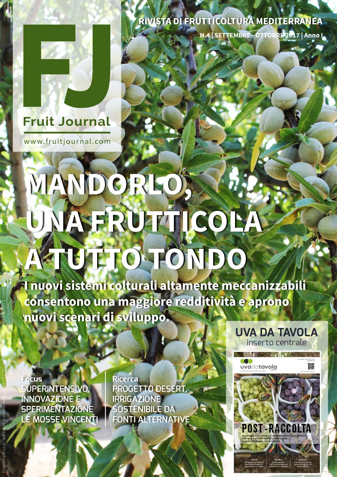 FRUIT JOURNAL - ANNO I N.4