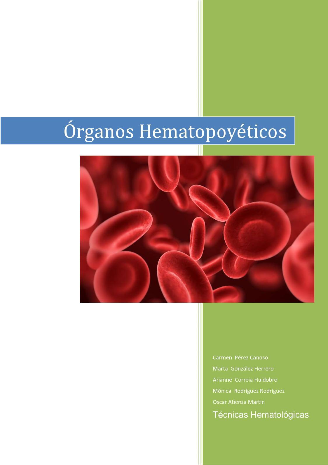 Trabajo De Organos Hematopoyeticos