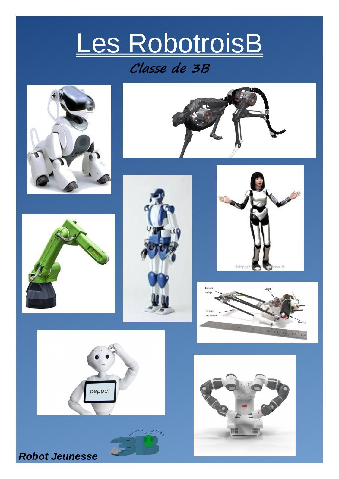 Livre Robotique 3B