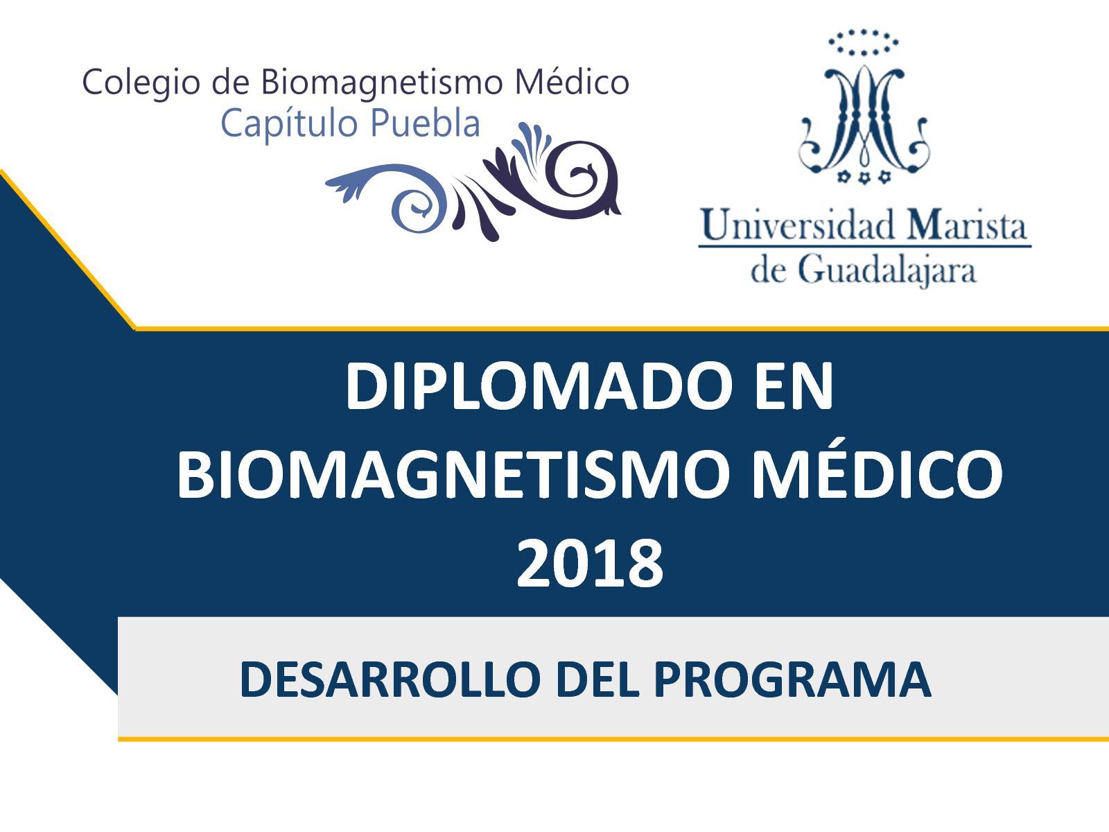 Calaméo - UMG DIPLOMADO EN BIOMAGNETISMO MEDICO