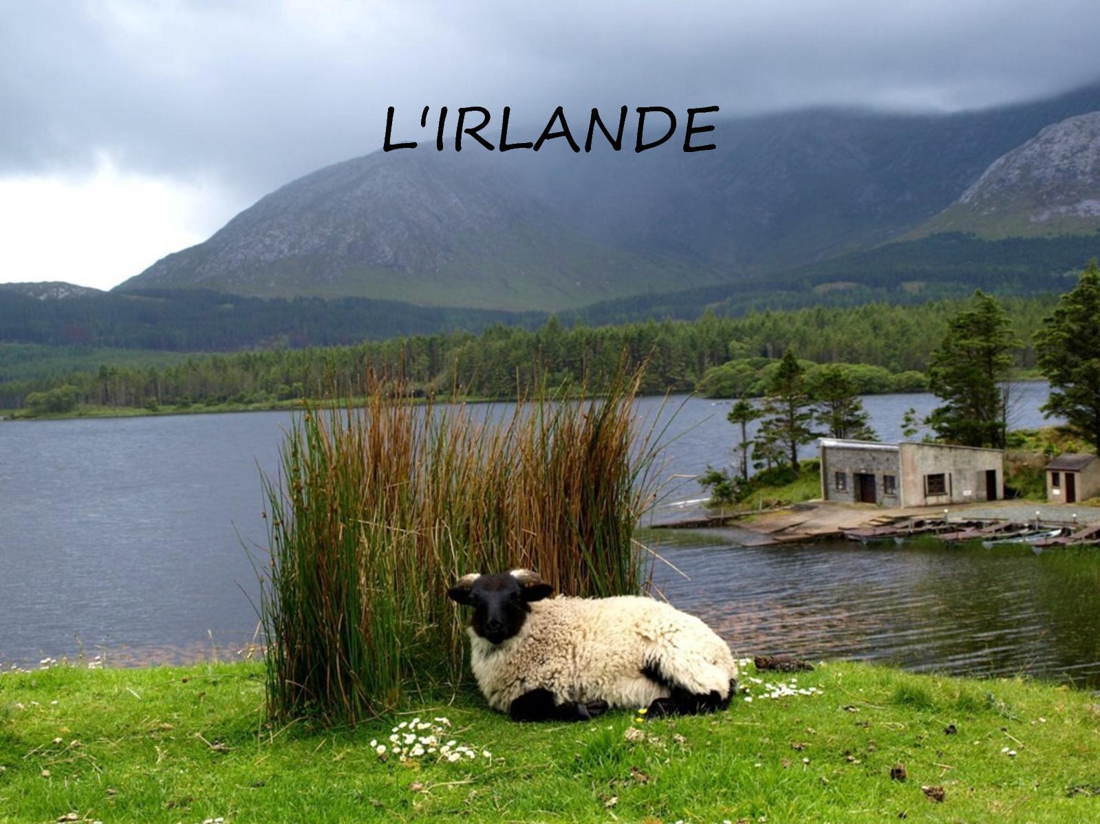 Irlande Clh