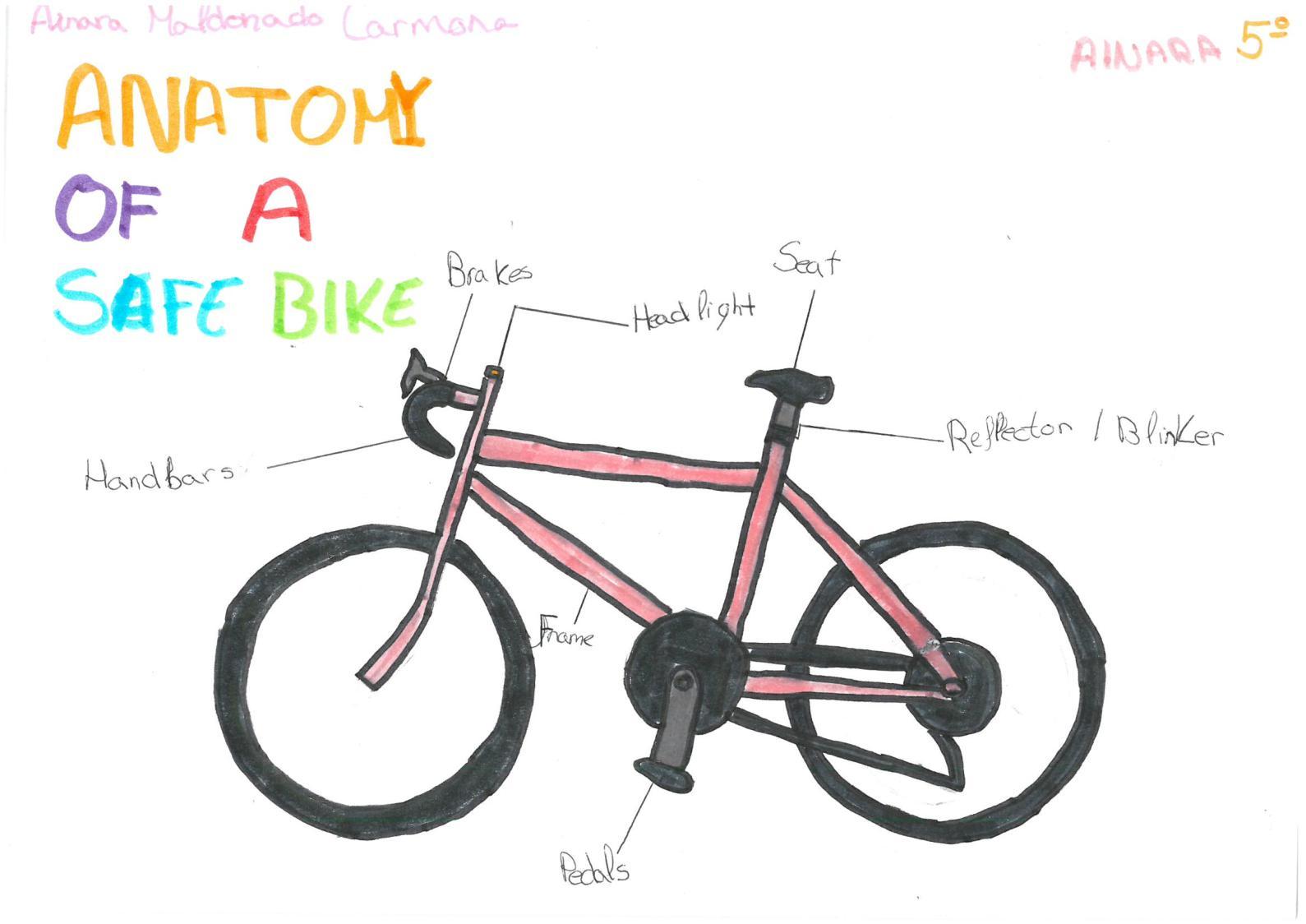 Calamo Anatomy Of A Bike