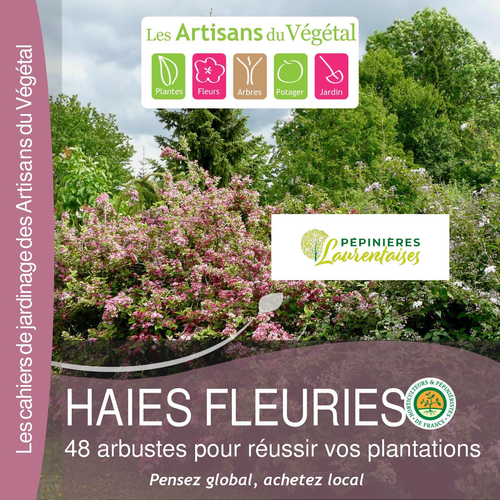 calam o plantes pour haies fleuries 1. Black Bedroom Furniture Sets. Home Design Ideas