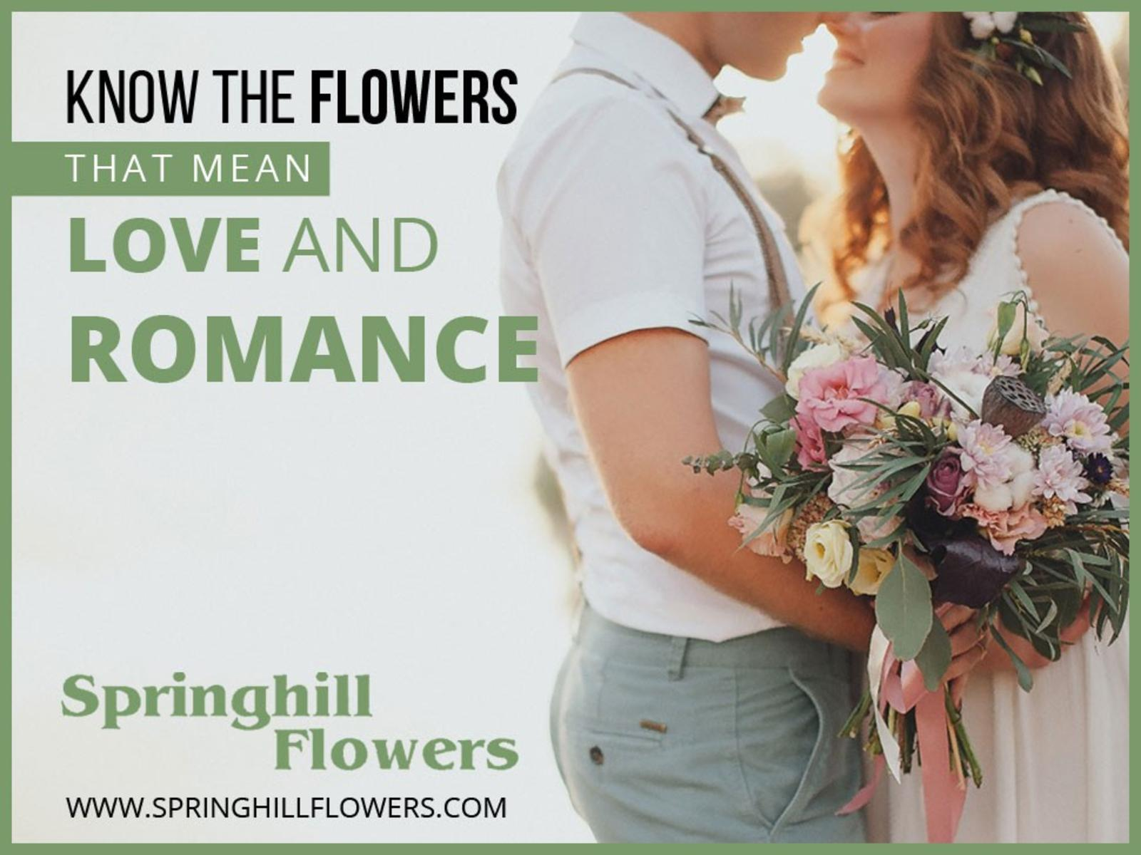 Calamo Springhill Flowers Leading Florists In London Ontario