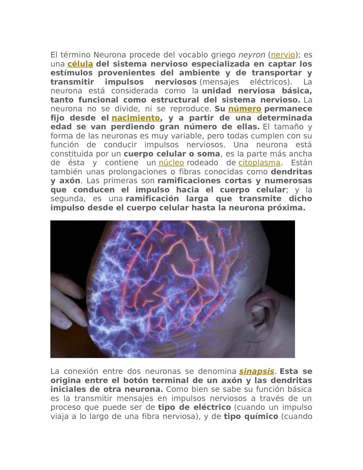 Que es un impulso nervioso y como se transmite