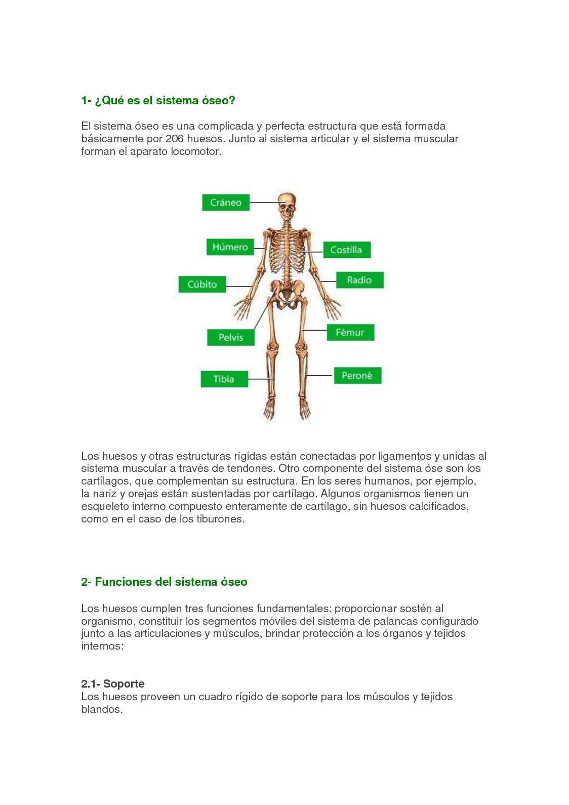 Calaméo - Sistema Oseo