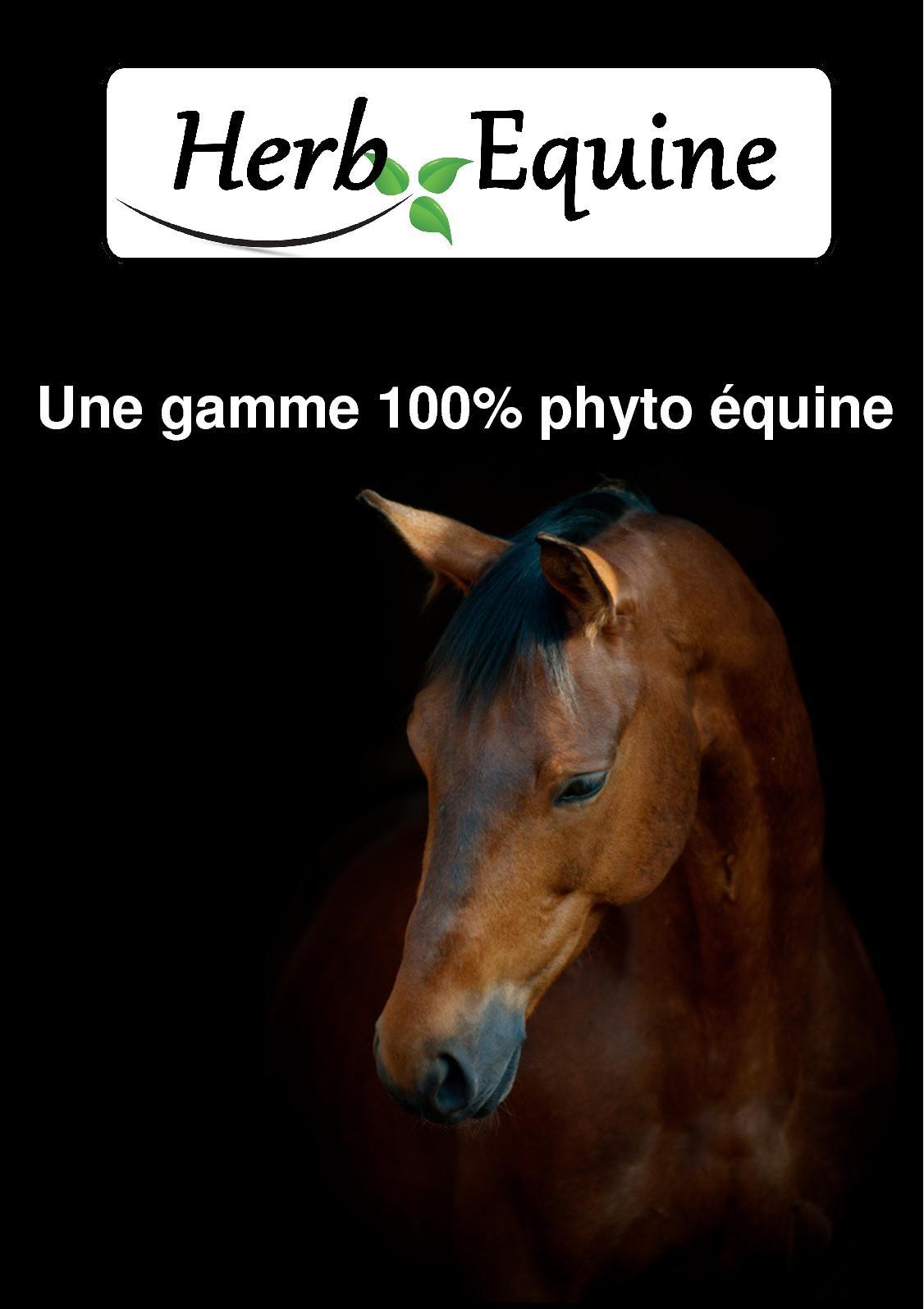 Catalogue Herb Equine