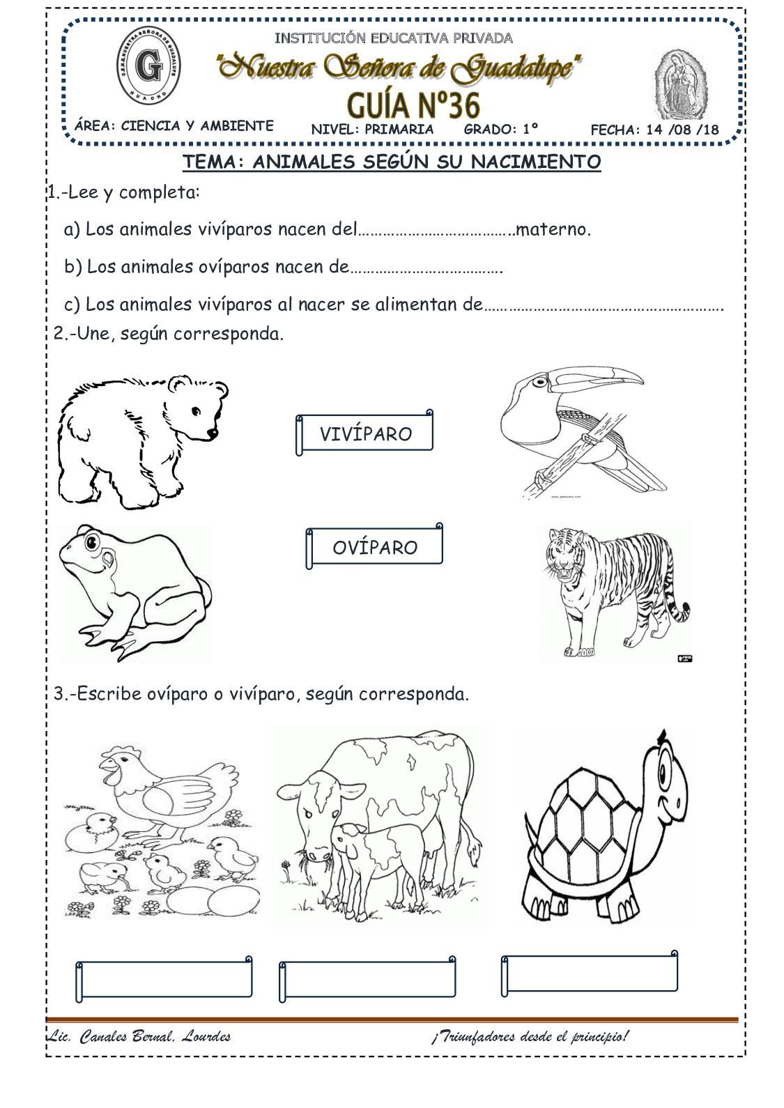 Animales Segun Su Nacimiento(36)