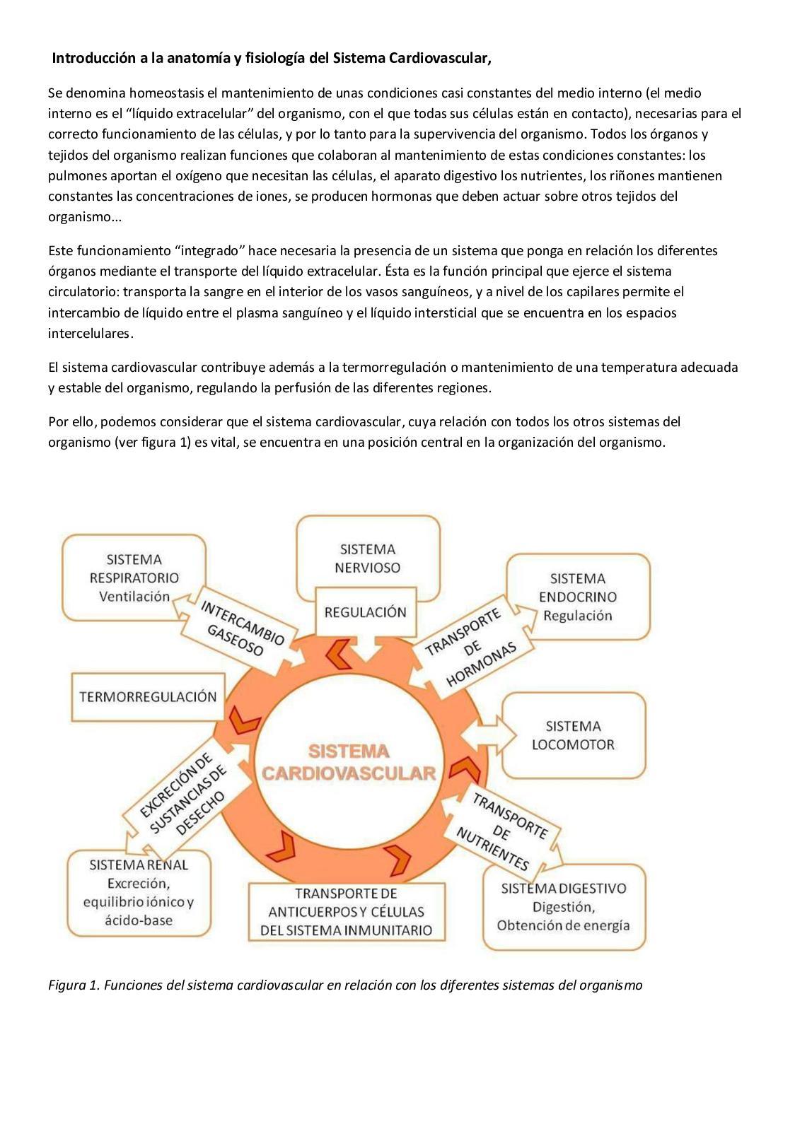 Calaméo - Fisiología Del Sistema 1