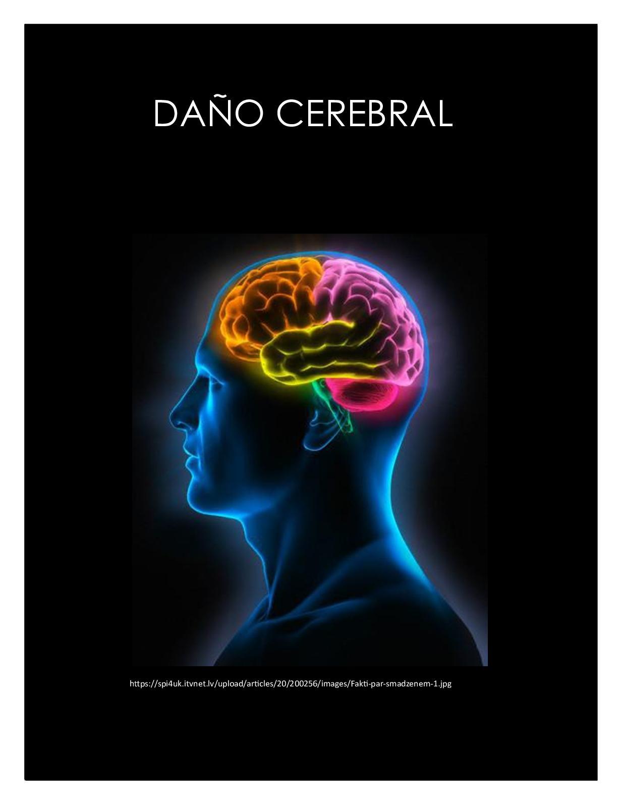 Calaméo - Cartilla Didactica, Daño Cerebral