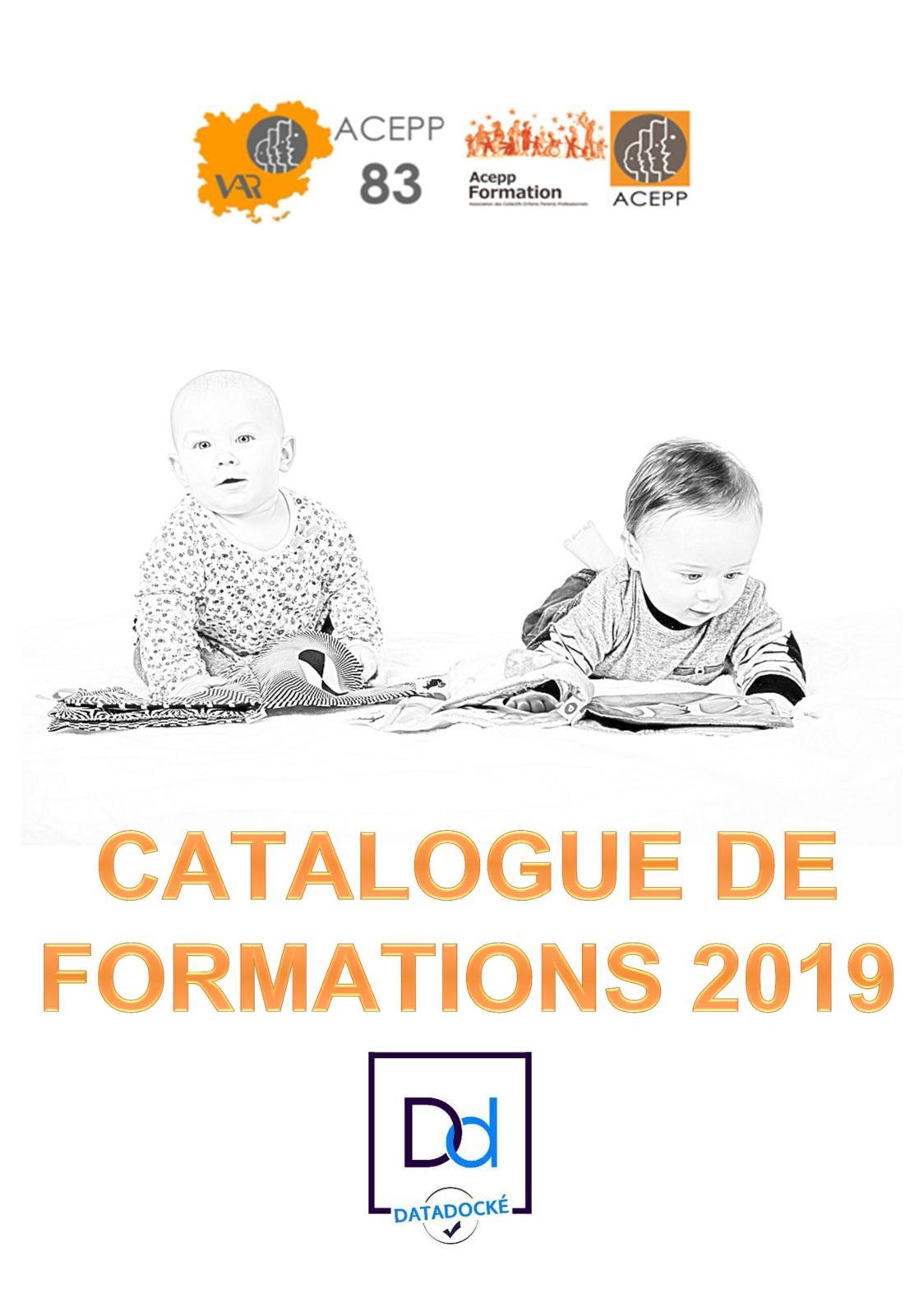 Catalogue 2019 VF Formations Acepp83