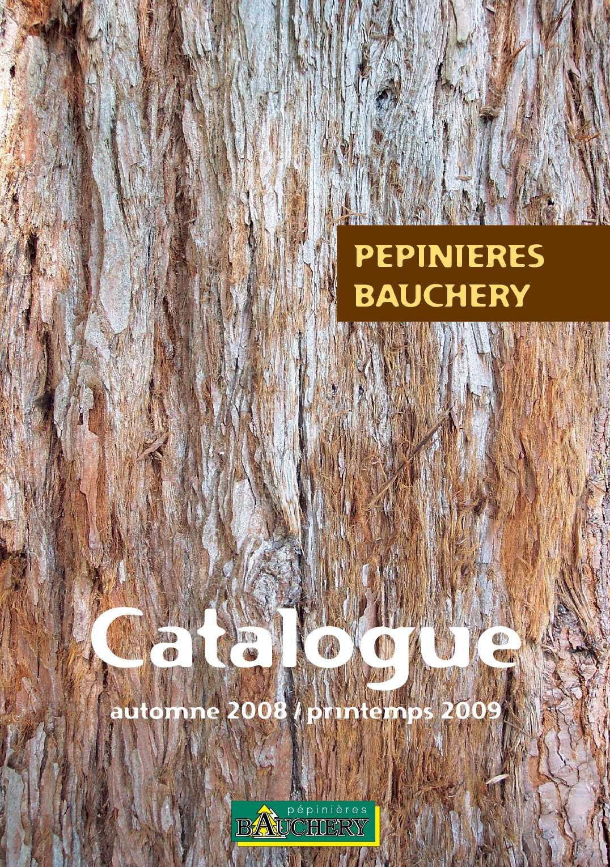 2x Parapluie Pin Arbre à feuilles persistantes bleu vert aiguilles de Pinus pinea Plante Comestible