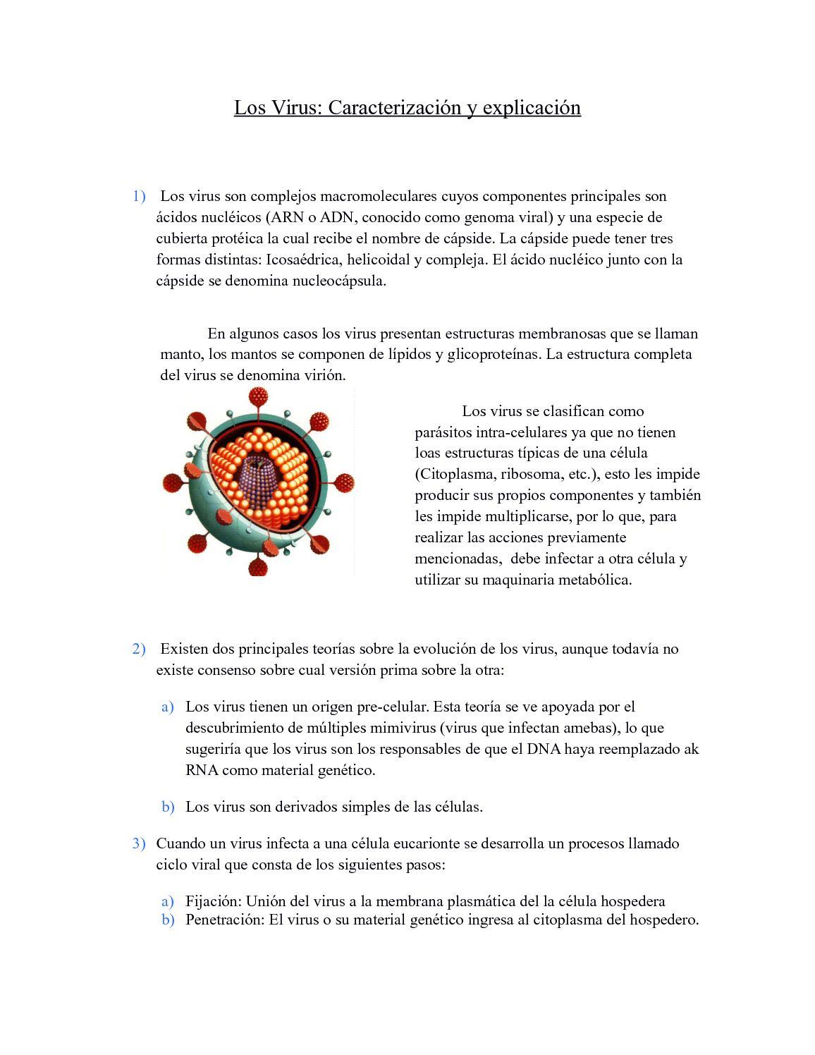 Calaméo Los Virus