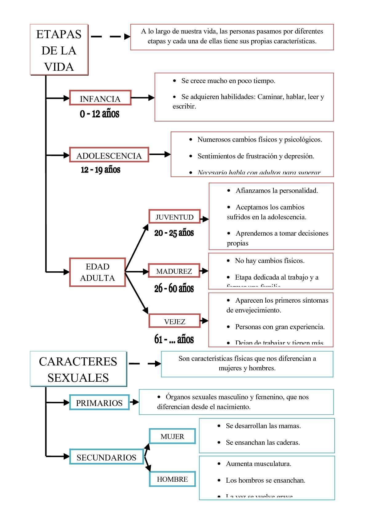 La Función de Reproducción (esquemas Tema 3)