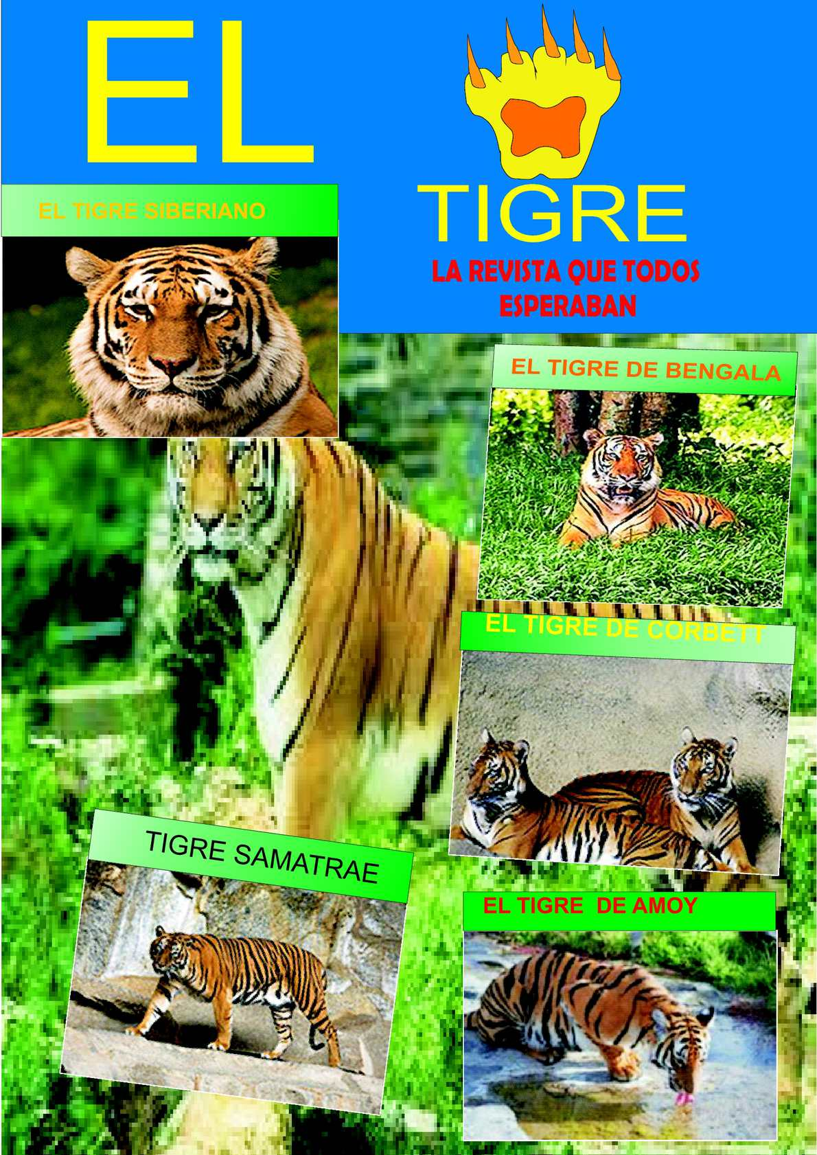 Calameo Revista El Tigre Por Pinedo Garcia Jorge Luis