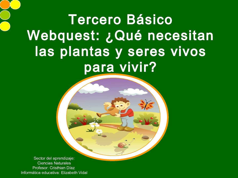 Calaméo Webquest 3º Básico Qué Necesitan Los Seres Vivos