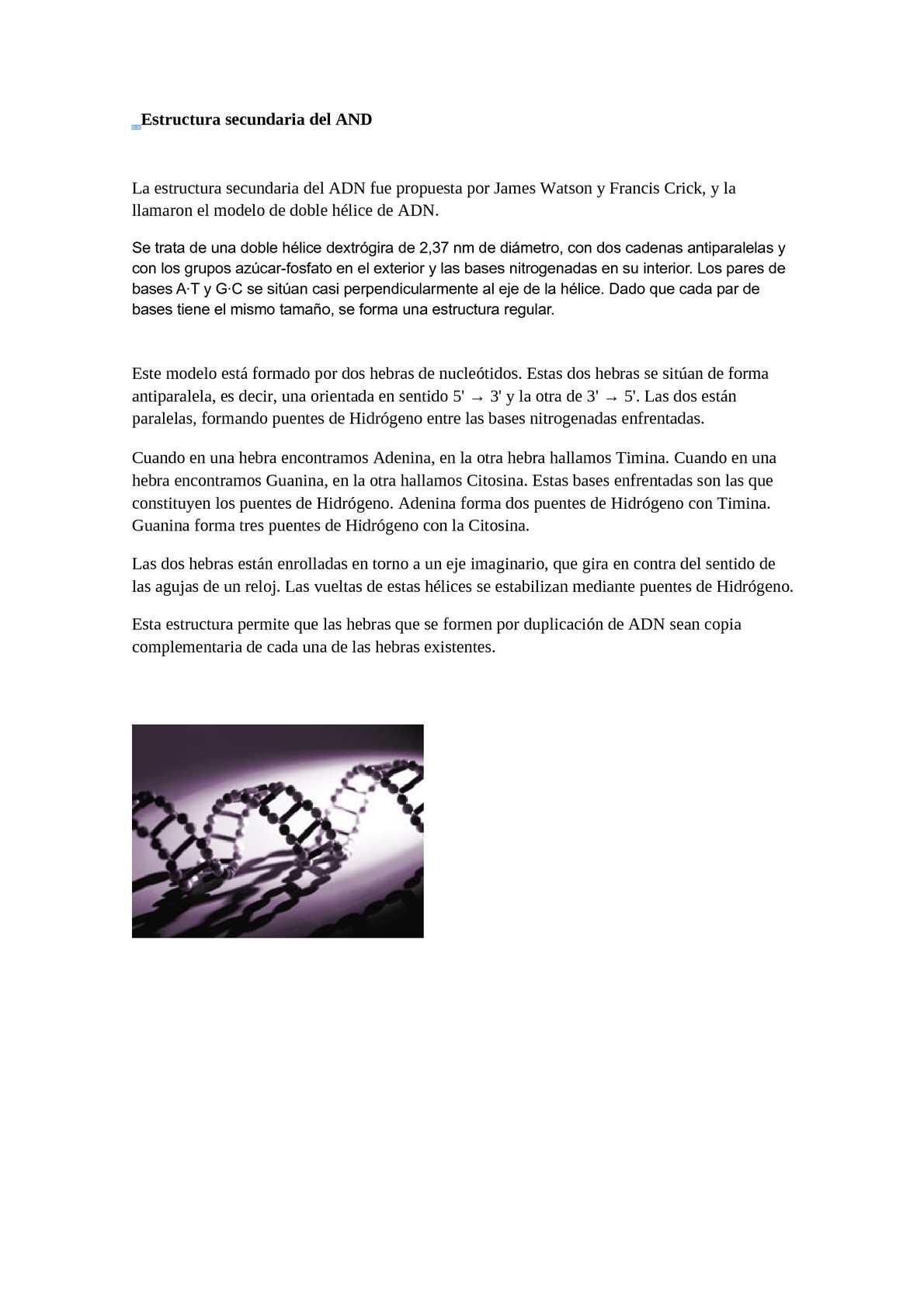 Calaméo Estructura Del Adn