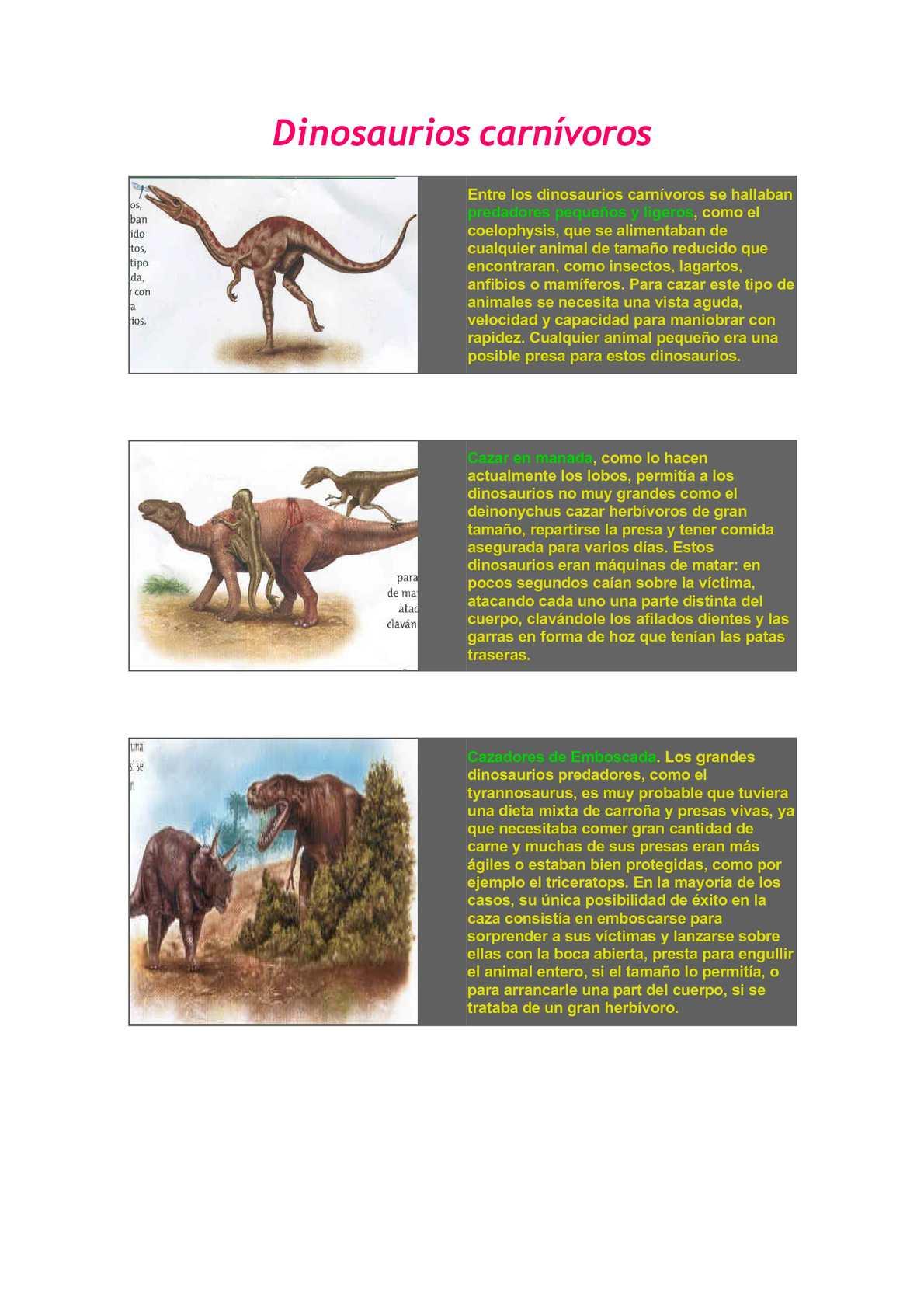 Calameo Dinosaurios Carnivoros Fue nombrado como bajadasaurus pronuspinax. calameo dinosaurios carnivoros
