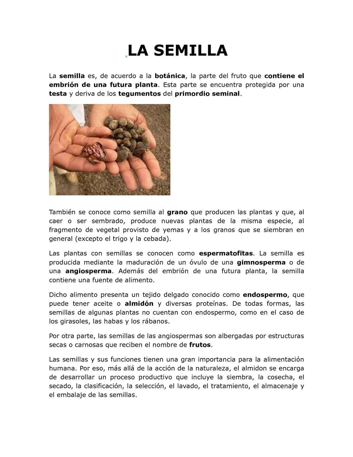 Calaméo - DEFINICION DE SEMILLA