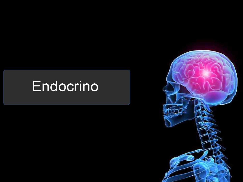 diabetes insípida y hipersecreción de epinefrina