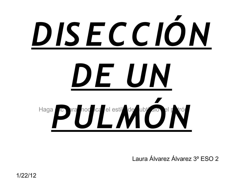 DISECCIÓN DE UN PULMÓN  Laura álvarez (3-2)
