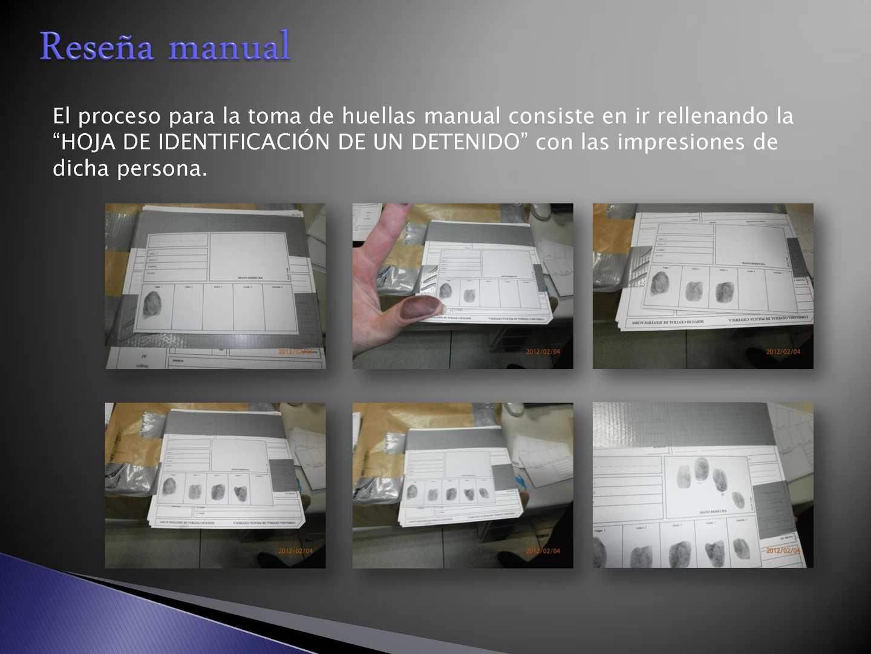 Dactiloscopia Forense Download