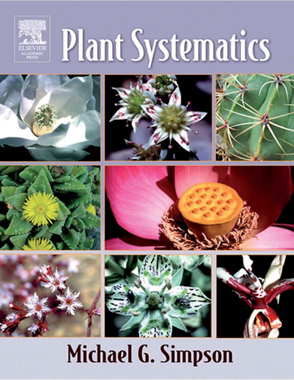 2 Bulbs Lycoris Radiata Spider Lily Flower Adaptable Garden Surface Vegetation