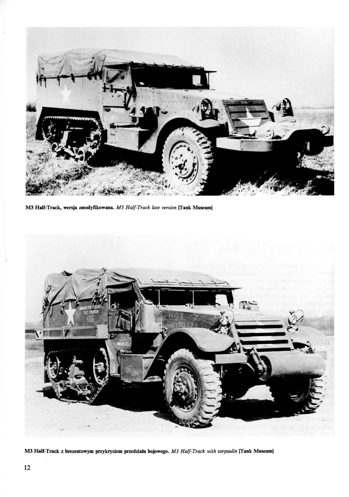 Wydawnictwo Militaria 25 Half-Track - CALAMEO Downloader
