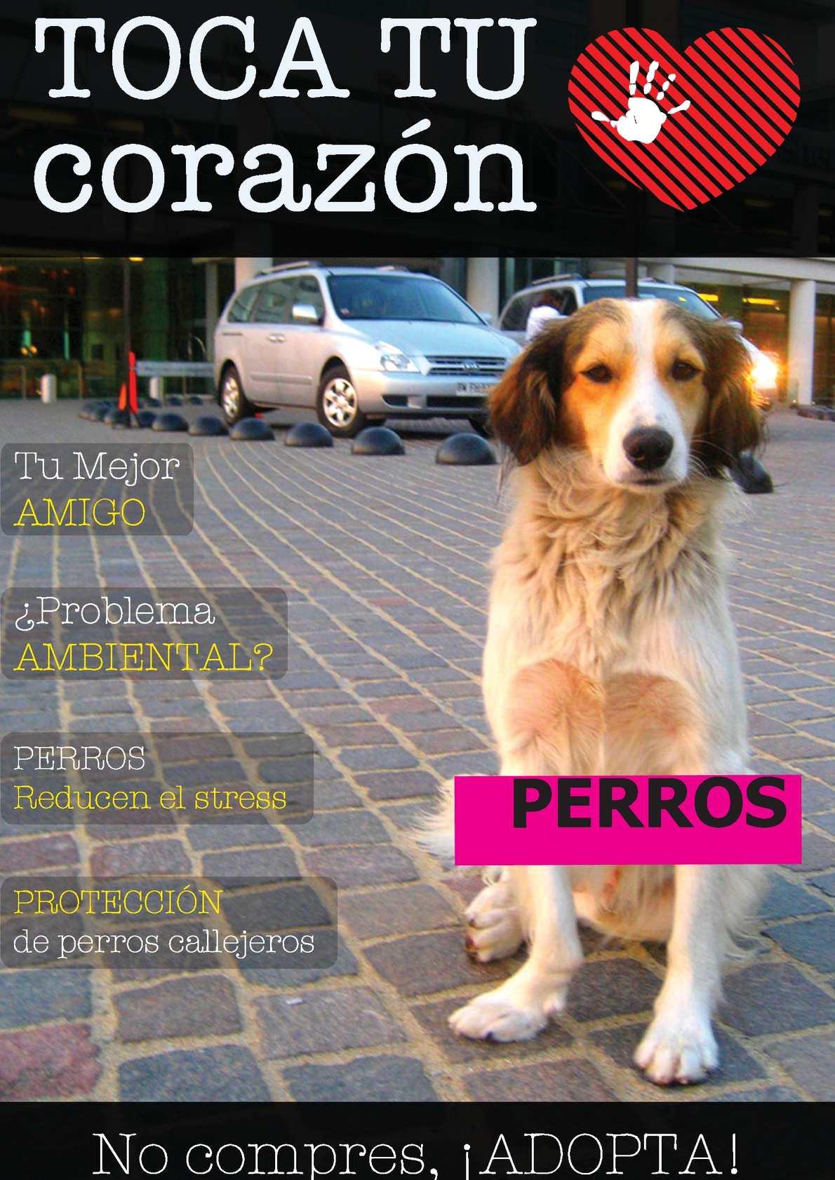 libros para adiestrar perros pdf