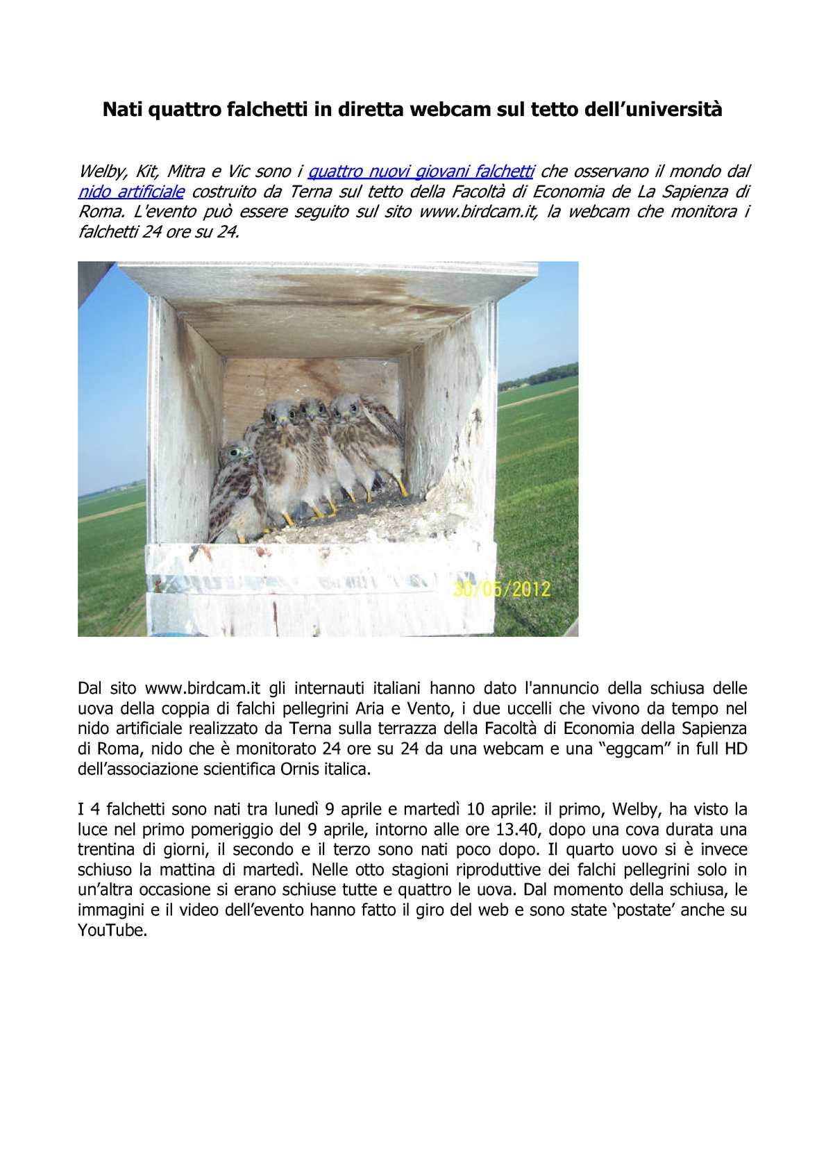 Calaméo Falchetti Webcam Terna Monitorati I Falchetti