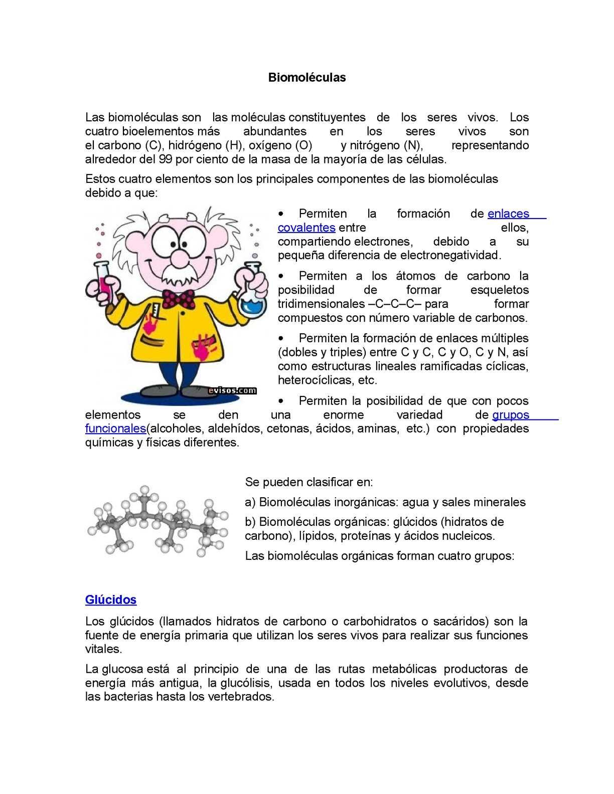 hidratos de carbono y proteinas diferencia