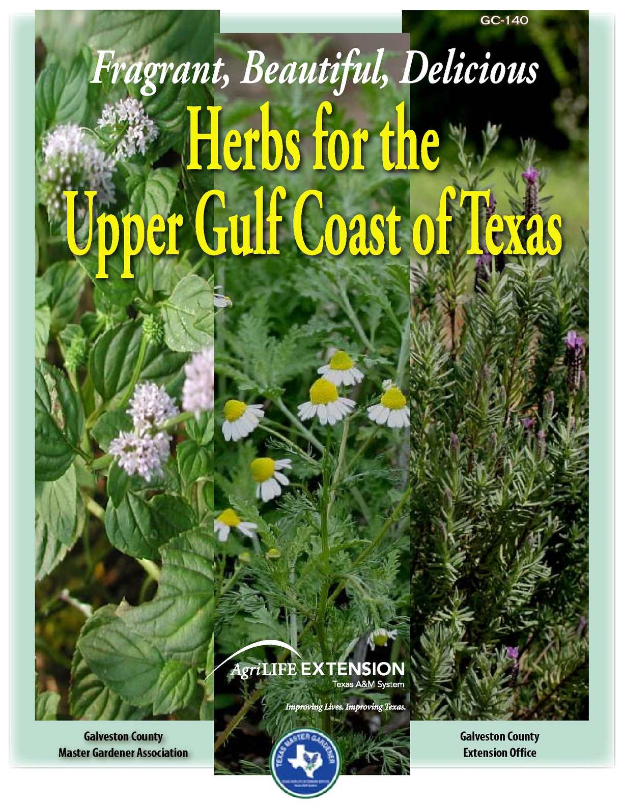 flower arrangement home decor allium rustic arrangement.htm calam  o herbs for the upper gulf coast of texas  herbs for the upper gulf coast of texas