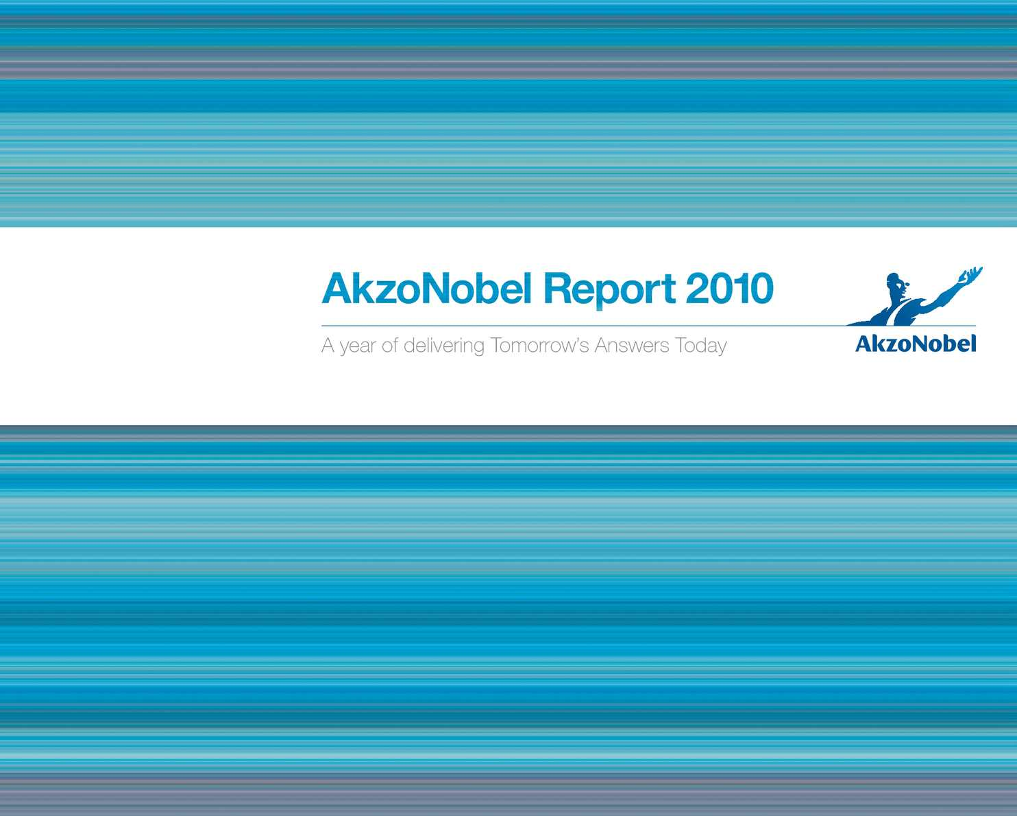 Calaméo - Akzonobel Report 2010