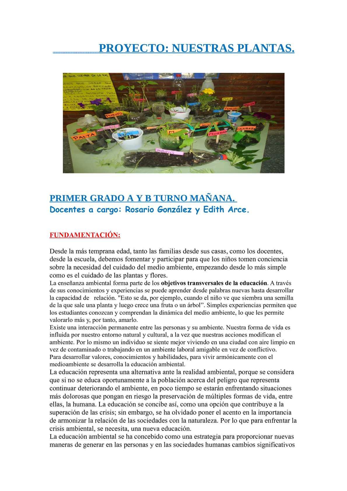"""Calaméo - """"NUESTRAS PLANTAS"""" Proyecto para 1º grado."""