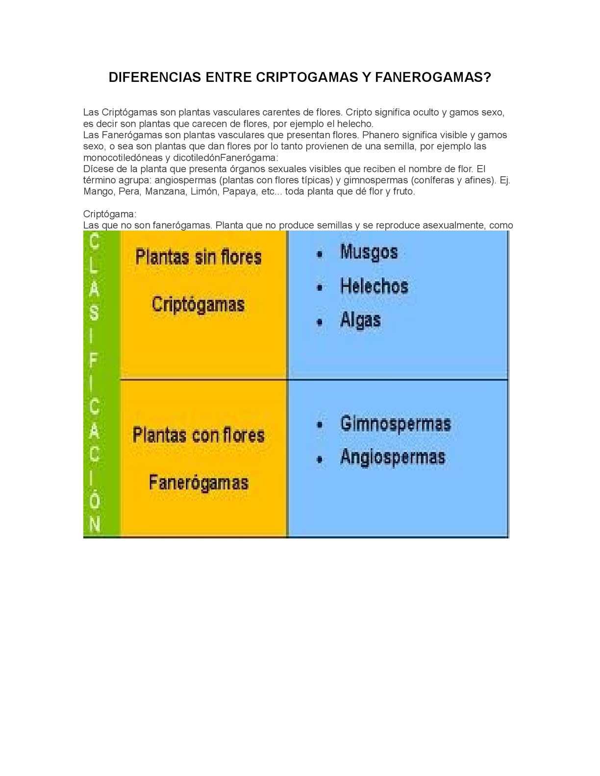 PLANTAS CRIPTOGAMAS Y FANEROGAMAS PDF DOWNLOAD