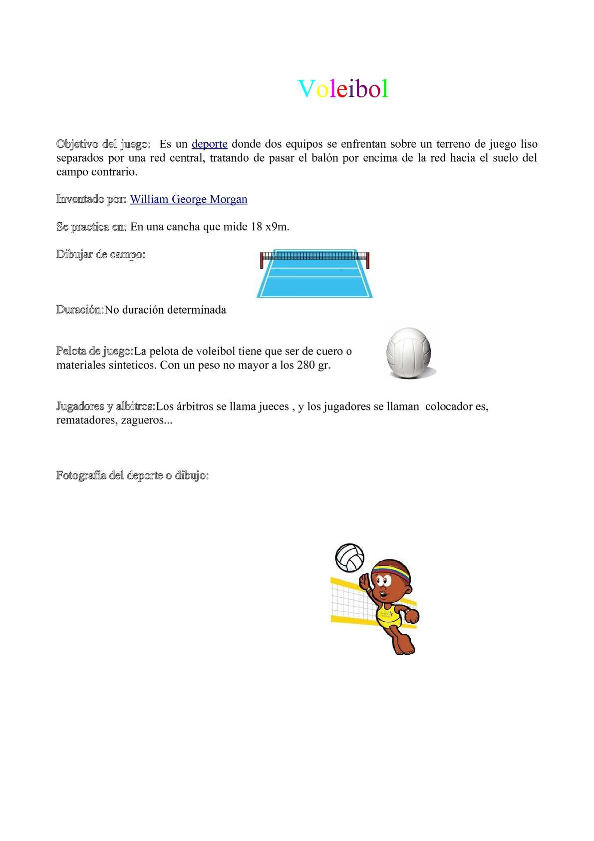 objetivo de gozne de voleibol