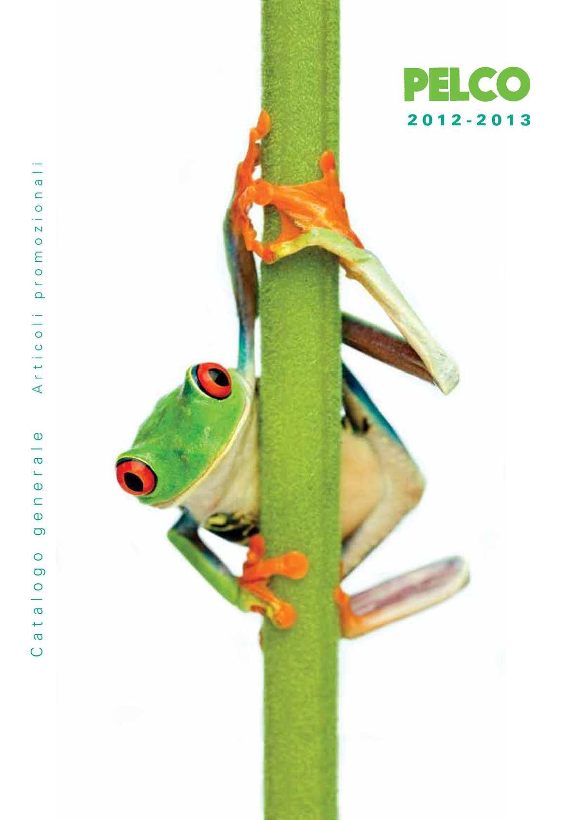 Junior star Astuccio e Portamonete-Rana 15 x 9 cm Verde