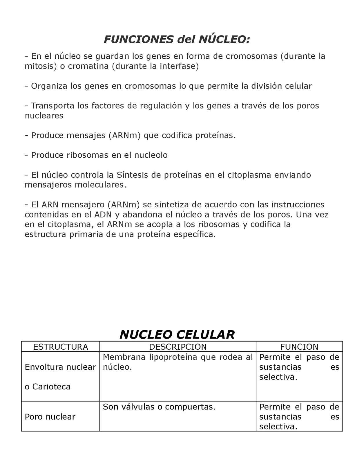 Calaméo Núcleo Celular