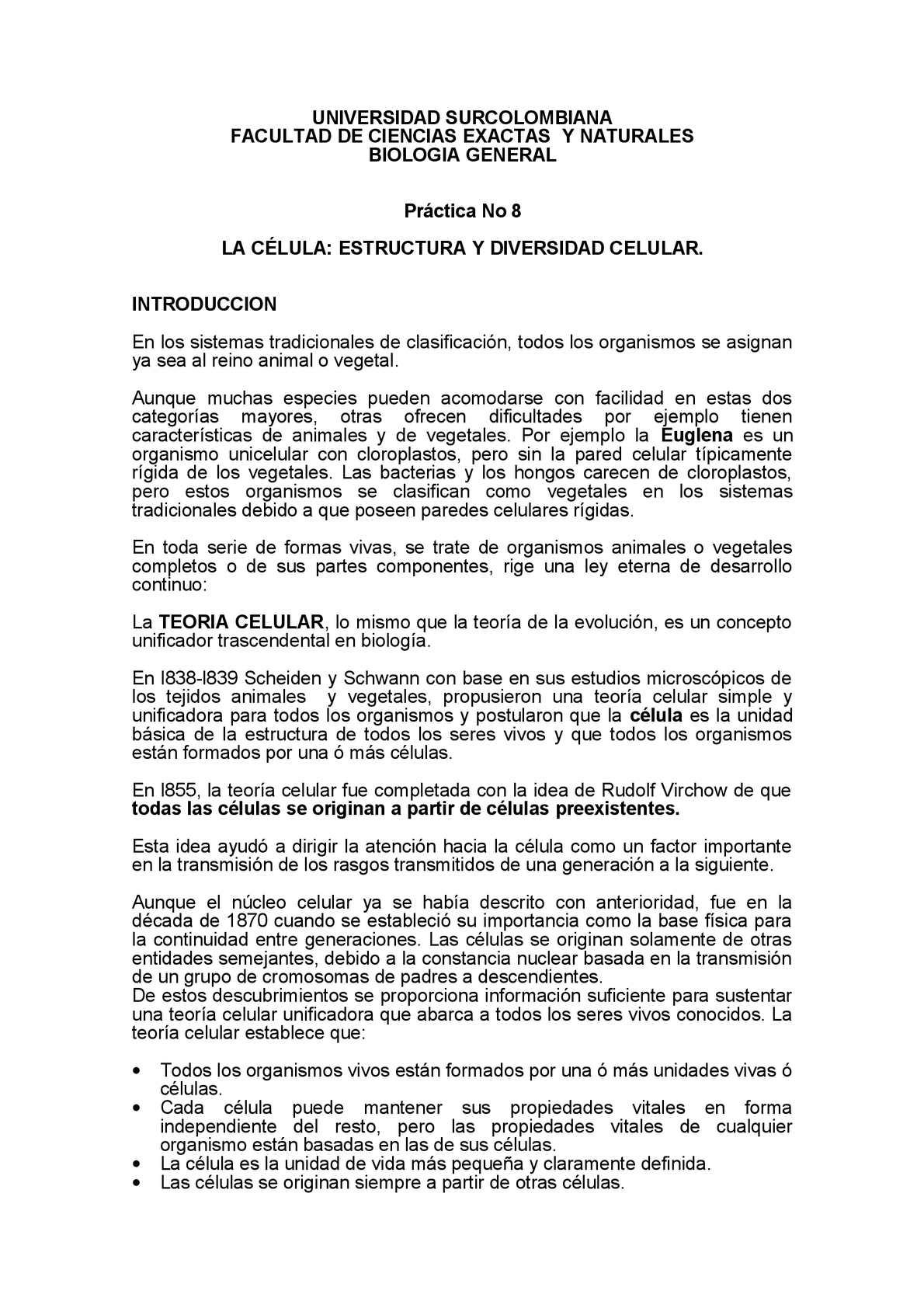 Calaméo Informe Quimica 2013