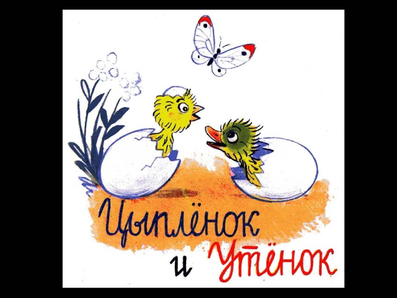 иллюстрации к сказке сутеева утенок и цыпленок компания является единственным