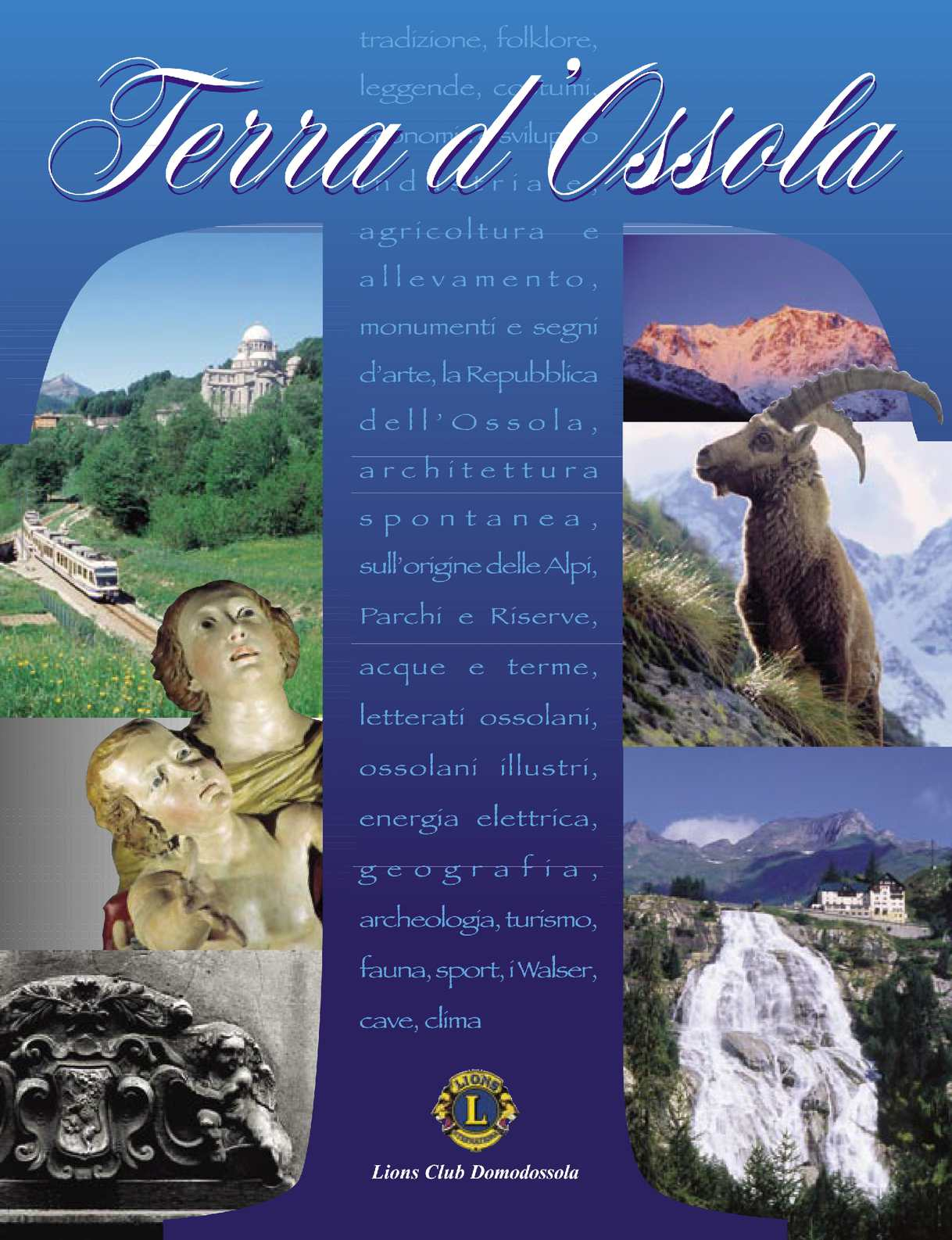 Onorevoli Lucentezza Setosa Lusso Pizzo Top Calze 15 denari-Morbido Liscio Durevole