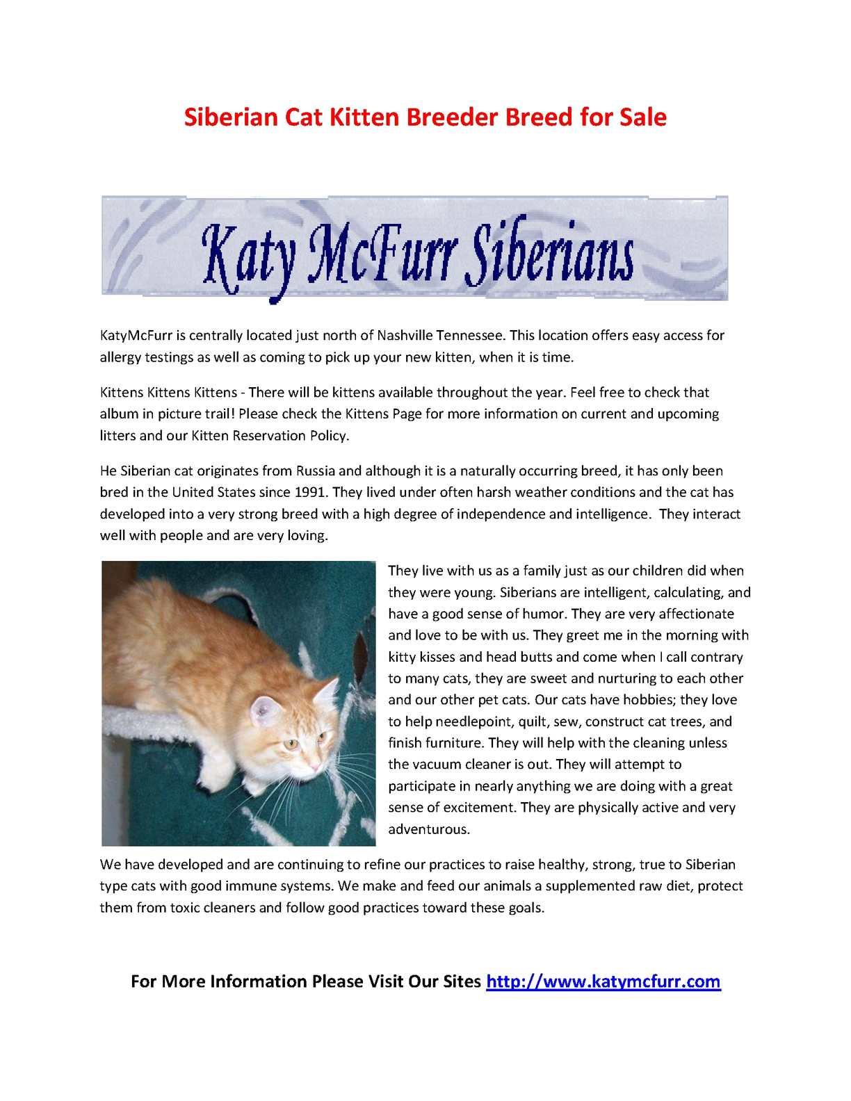Calameo Siberian Cat Kitten Breeder Breed For Sale